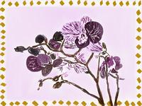 Orchids // Nod to Gustave Baumann