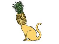 PineapplePuss