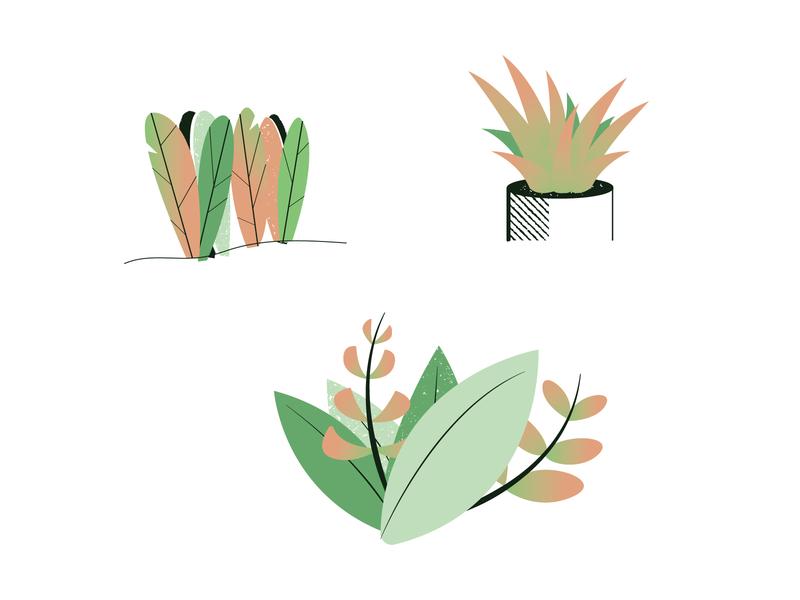 More Plants texture gradient vector plants plant illustraion