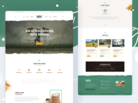 Ricepo - Rice Manufacturing Website Design