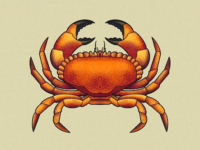 brown crab stylised textured illustration shellfish crab browncrab
