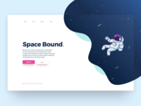 Software Landing Page Concept