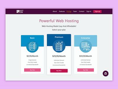 Pricing Web Design design web system server hosting pay buy price