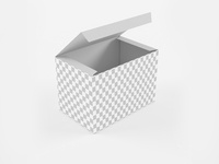 3D Low Poly  Open Product Box