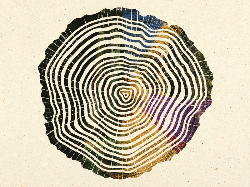Tree Rings color texture art illustration book cover book tree rings tree