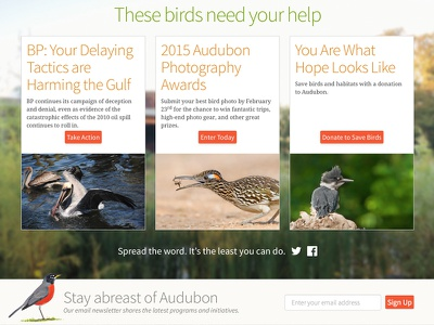 Stay Abreast birds audubon nature photography fundraising non-profit mule design