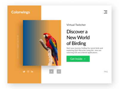 Colorwings sanctuary zoo figma design figma landing page concept macaw birds landing page ui landing page landing page design
