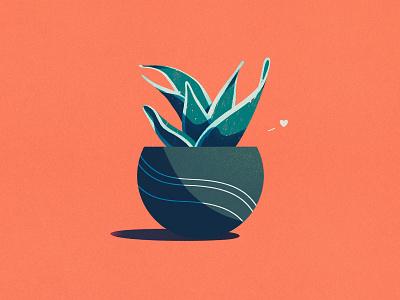Kevan the Snake Plant house plant vase cute leaves love procreate botanical art pot plant illustration