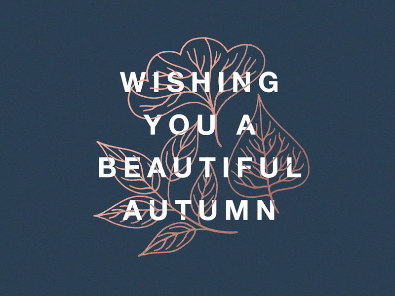 Beautiful Autumn leaves typography autumn fall illustration design greeting card photo card