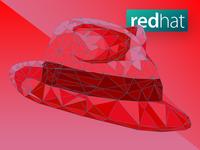Redhat Illustration