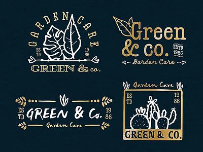 Annie Font - Branding font handlettering handletter typography lettering vector logo illustration branding design