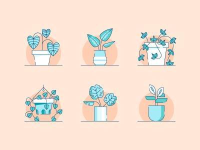 Plants clean peace lily monstera philodendron pothos english ivy dieffenbachia caladiums plants vector design illustration