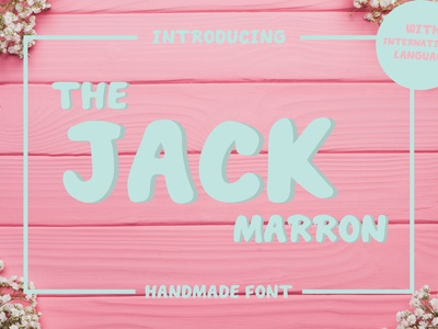 THE JACK MARRON DISPLAY FONT serif slab scandinavian charming adorable pretty handwriting handdrawn sweet cute display font font