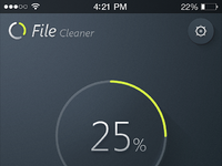 File cleaner max