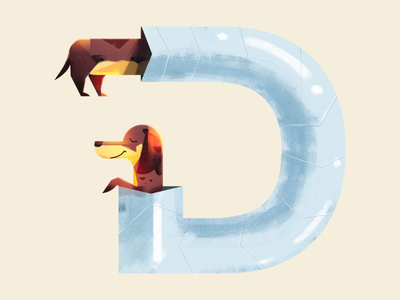 D for Dachshund dachshund dog illustration