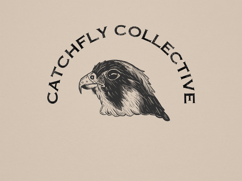 Catchfly Collective drawings procreate one color drawing icon logo adobe design illustration illustrator bird illustration outdoors nature digital illustration digital hawk bird