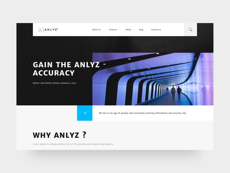 Anlyz Website concept portfolio design interface web site ux ui