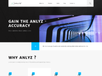 Anlyz website v01