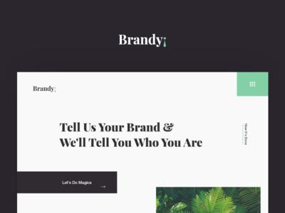 Brandy¡ Agency Landing Page agnecy studio website home page branding marketing brand landing page