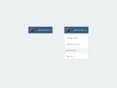 Daily UI Challenge - Day #027 Dropdown