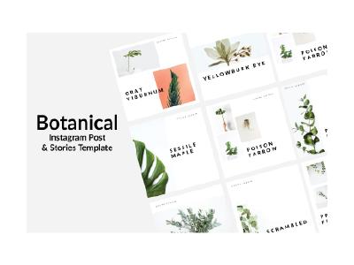 Botanical Instagram Template ppt design inspiration instagram post instagram template instagram stories templates template design instagram