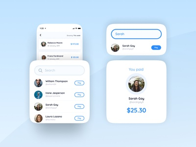 Search bar for a payment app