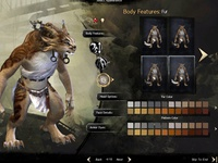 Character Create for Guild Wars 2