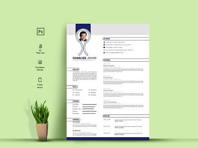 Resume Template curriculum vita professional cv resume template cv resume