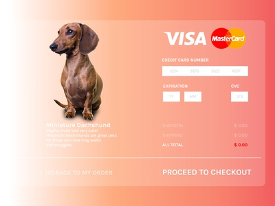 Credit Card Checkout dailyui dachshund ux ui creditcard checkout
