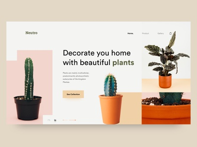 Neutro : Header Exploration ui design design minimal creative  design ui ux user experience user interface design inspiration ux ui decoration plant header ui web ui website web desgin web header exploration header design header