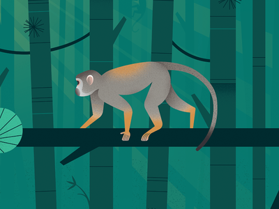 Squirrel Monkey bamboo forest squirrel monkey forest monkey illustration