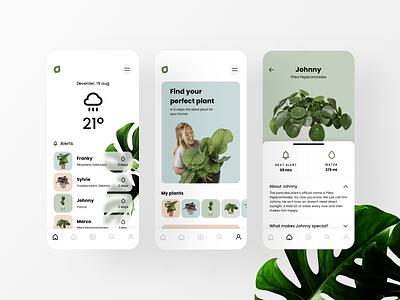 Plantsome App Concept light web interface webdesign ux ui design plants mobile app