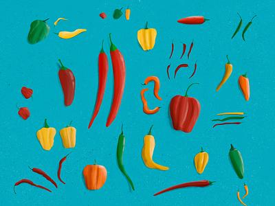 Procreate Peppers hot spice spicy color food peppers apple pen ipad pro procreate