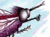 Blowflyy Illustration