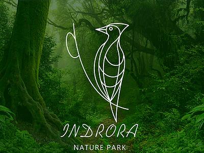 Wildlife Sanctuary - 03 illustration nature fatlineillustration woodpecker branding