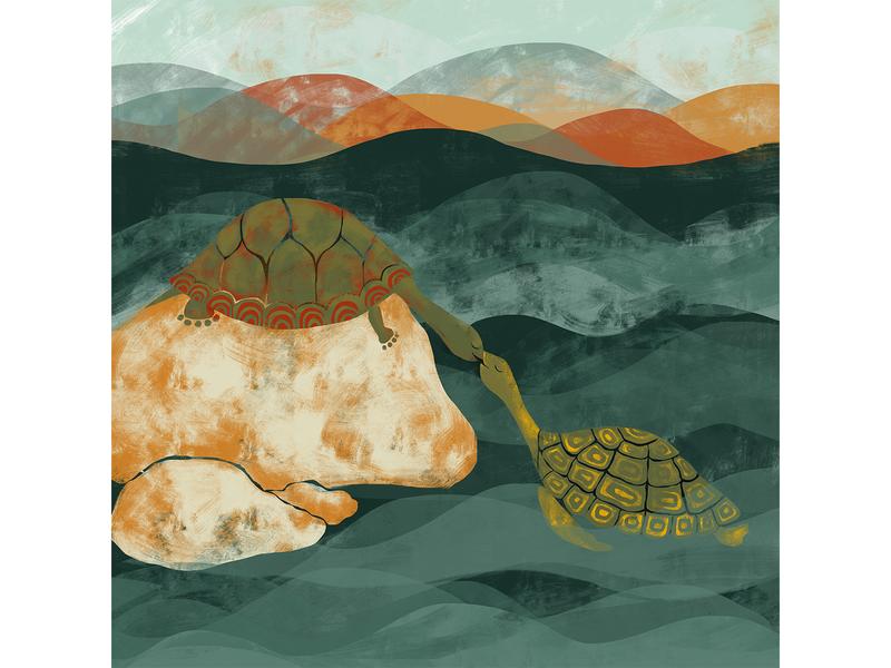 Turtle and Tortoise nature lovers tortoise turtle children book illustration design adobe digital illustration
