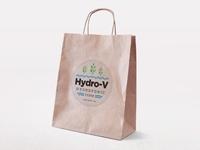 Hydro-V Logo