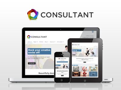Wp consultant