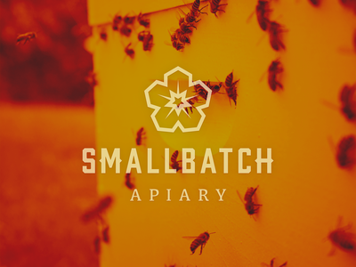 SmallBatch Apiary Logo honeycomb hexagon flower batch smallbatch small apiary honey bee honeybee photoshop illustrator photography photo typography branding logo vector icon design