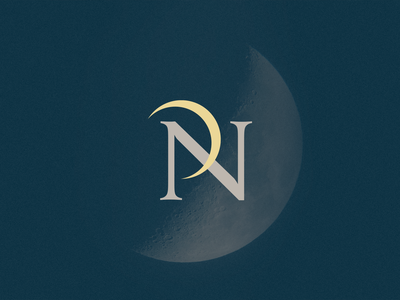 P+N Monogram thumbnail space lunar moon monograms monogram letter mark monogram design p monogram typography branding logo vector icon design