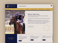 Website for Thoroughbred Racing Partnership