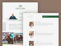 Website Design - Thoroughbred Bloodstock Agent