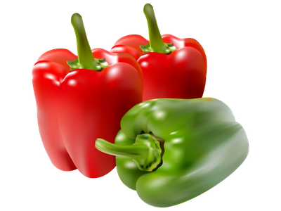 Paprika red green realistic meshfill art meshfill art meshfill realistic organic capsicum vegetable red vector pepper paprika healthy natural