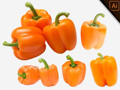 Gradient Mesh Vector Illustration of a Orange Paprika