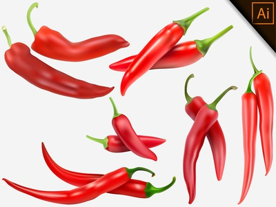 Vector realistic Red Chili Illustration from a mesh gradient