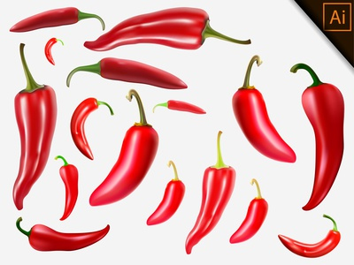 Fresh Red Chili Realistic With Gradient Mesh