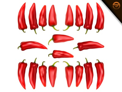 Vector of Fresh Red Chili with Realistic Gradient Mesh