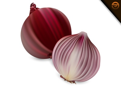 Fresh Red Onion With Gradient Mesh, Vector Illustration