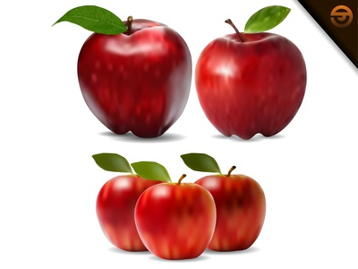 red apple and single leaf with gradient mesh
