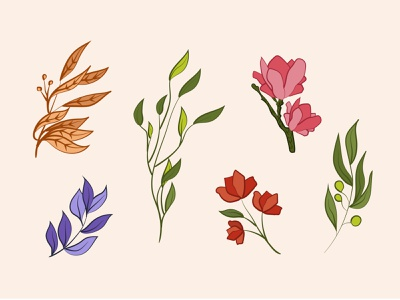 Floral Illustrations digital illustration colors illustrator line drawing floral design leaves floral art drawings illustration art artwork illustration